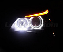Angel Eyes LED pack for BMW 5 Series (E60 E61) Phase 1 - with original-fit Xenon - Standard