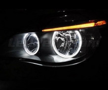 Angels eyes LED pack for BMW 5 Series E60 E61 Ph 2 (LCI) - Without original xenon