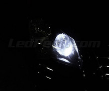 Sidelights LED Pack (xenon white) for Volkswagen Polo 9N3