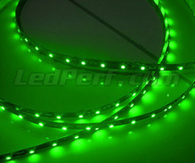 Standard 50cm flexible strip of (30 leds SMD) green