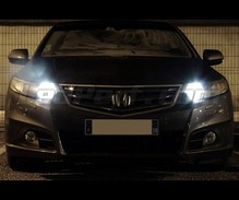 Sidelights LED Pack (xenon white) for Honda Accord 8G