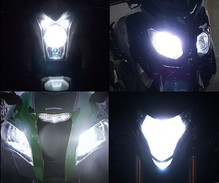 Xenon Effect bulbs pack for Aprilia Dorsoduro 900 headlights