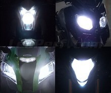 Xenon Effect bulbs pack for Triumph Bonneville Bobber Black headlights