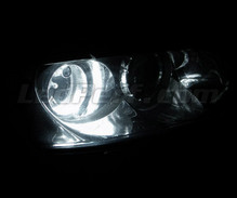 Sidelights LED Pack (xenon white) for Alfa Romeo 166